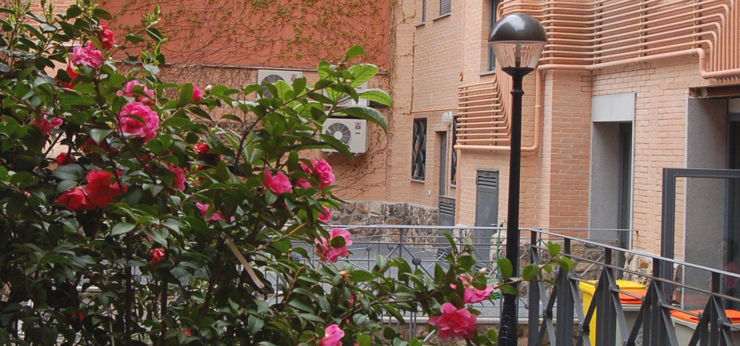 Apartamentos econ micos en alquiler en madrid 1 habitaci n otamendi - Alquiler de pisos en madrid baratos ...