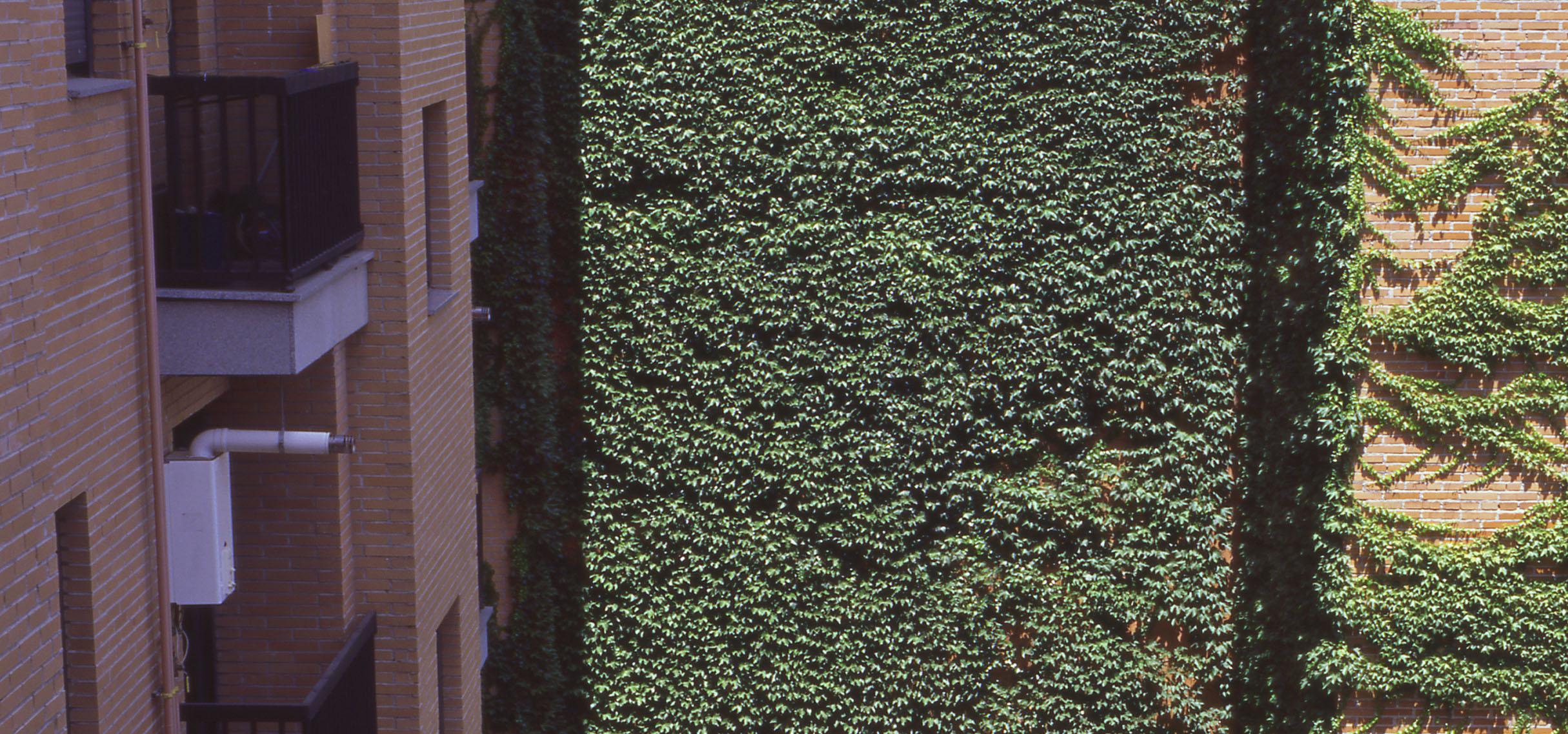 Alquiler apartamentos amueblados en madrid por meses otamendi tetu n - Alquiler de pisos baratos en madrid por particulares ...