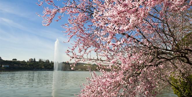 proinca madridfansblog parques jardines madrid 4