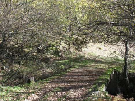 proinca madridfansblog escapadas invernales madrilenas rutas sierra madrid