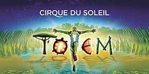 Madrid navidad cirque du soleil