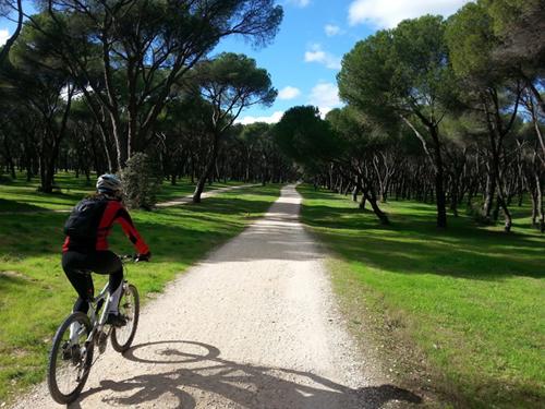 rutas en bicicleta madrid casa de campo